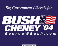 Bushcheney